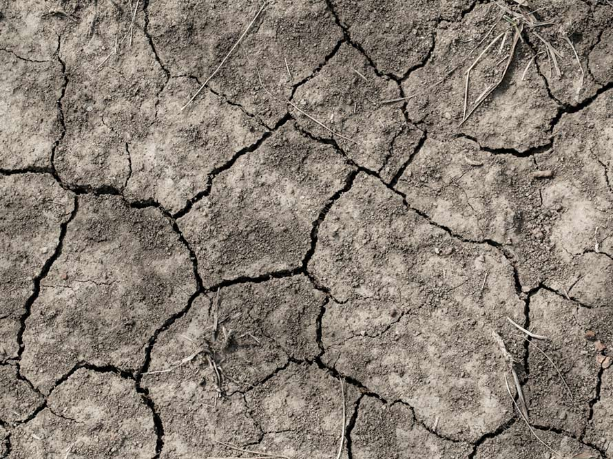 Australian Government Drought Resilience Innovation grants EOI